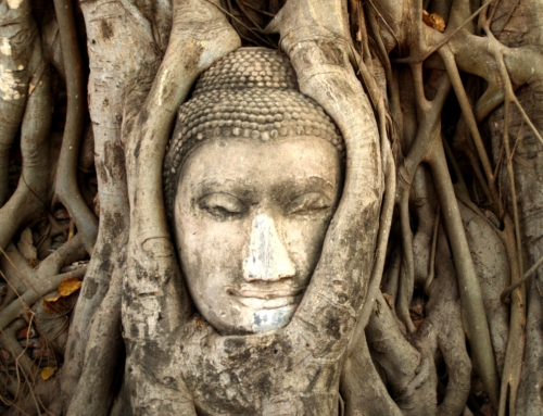 Can Mindfulness Replace Psychotherapy?